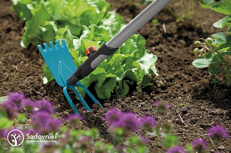 Услуги садовника для коттеджей и дач