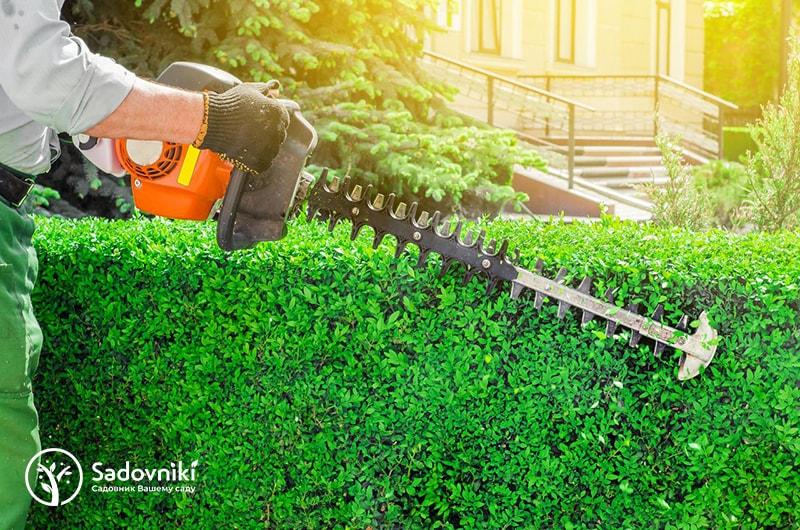 Садовник для жилых комплексов